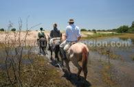 Randonnée à cheval, Esteros del Iberá