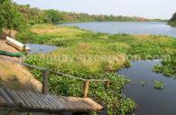 Parc national Río Negro, Pantanal Paraguay