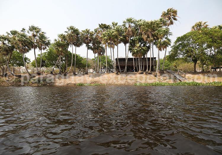 Voyage animalier parc national Rio Negro