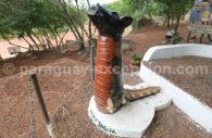 Teyú Yaguá, corps de lézard et tête de chien, mythologie Paraguay