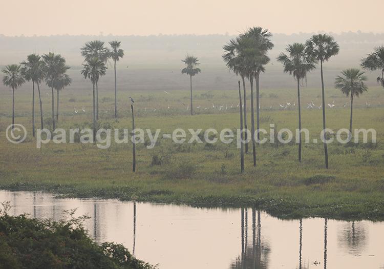 Randonnée parc Rio Negro, Paraguay