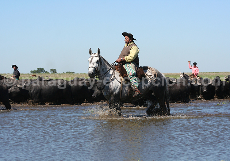 Estancia Gran Chaco