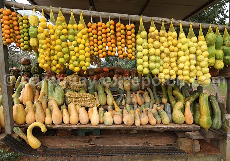 Marché de fruits au Paraguay avec Paraguay Excepción