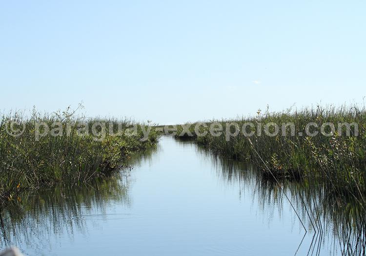 Agence de voyage francophone Pantanal Paraguay