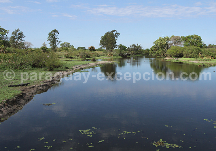 Paysages du Chaco paraguayen