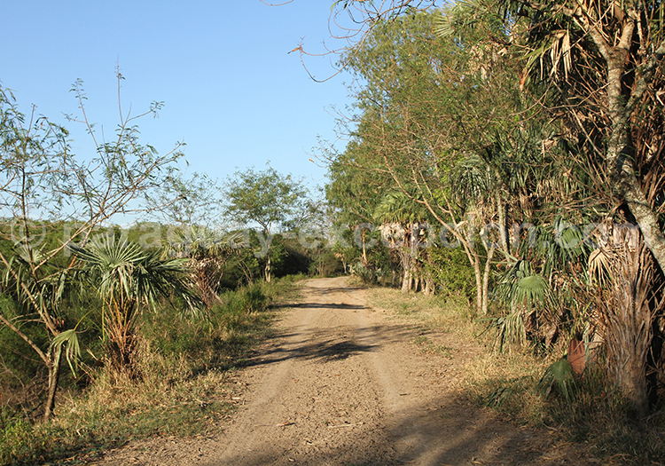 Autotour Chaco Paraguay
