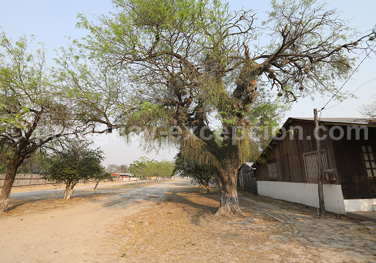 Hôtels à Bahia Negra Chaco