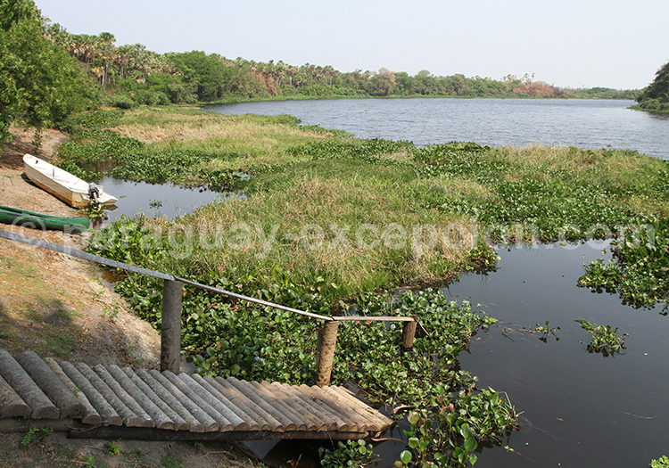 Découverte parc Rio Negro, Paraguay