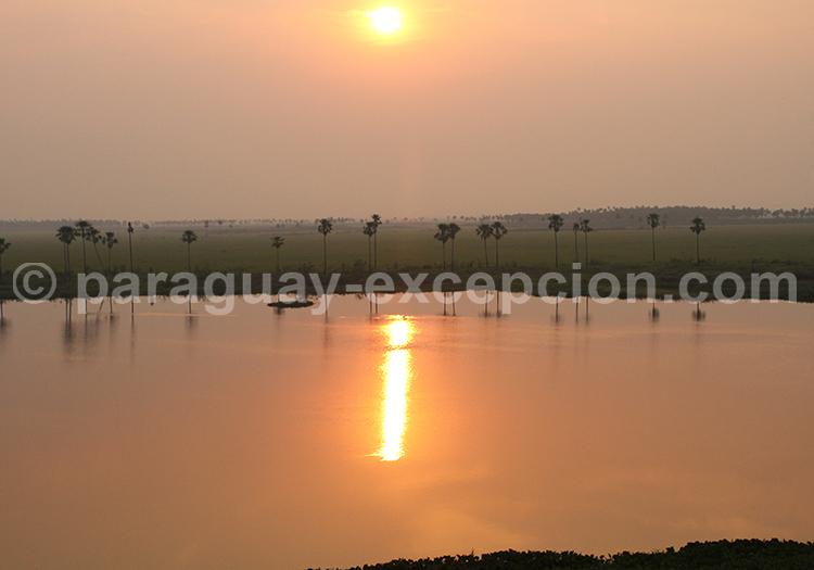 Tres Gigantes Pantanal Chaco Paraguay