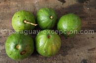 Papaya paraguaya