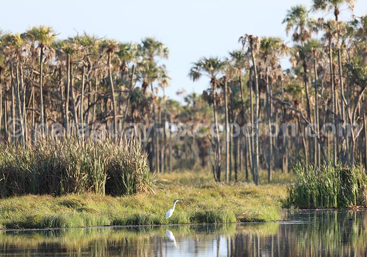 Voyage à la carte Chaco Paraguayen