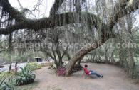 Jardin Botanique, Asunción, Paraguay
