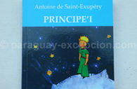 Petit prince en Guarani