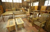 Sylviculture, une des premières ressources du Paraguay