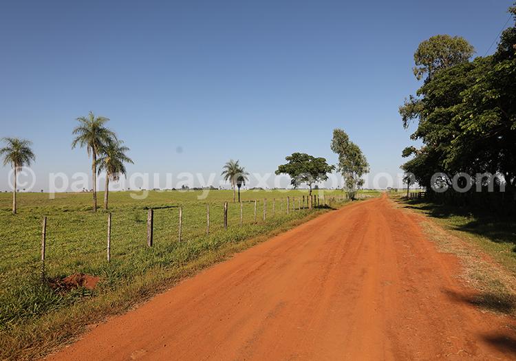 Prendre la route au Paraguay, Yvy