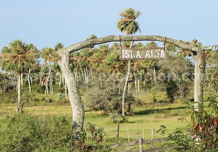 Isla Alta, estancia du Paraguay, Yvy