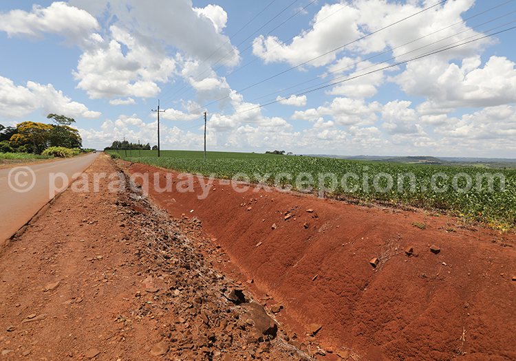 Plantations et terre rouge au Paraguay