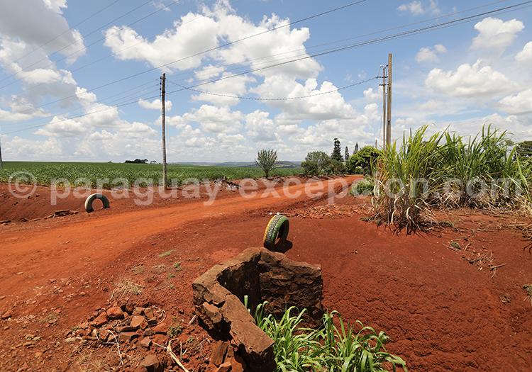 Terre riche du Paraguay, agriculture