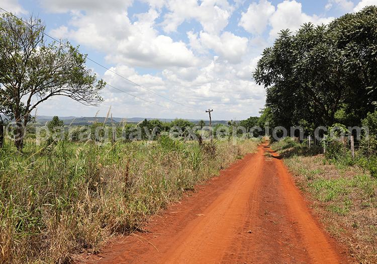 La terre ocre du Paraguay, Yvy