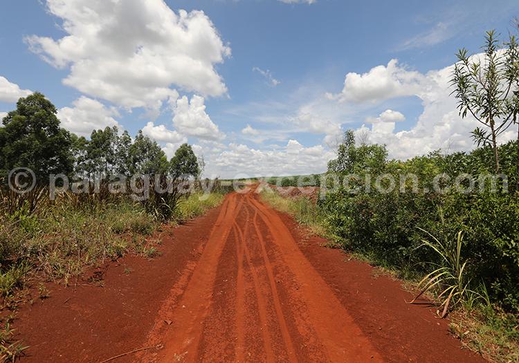 Chemin de terre rouge au Paraguay, Yvy