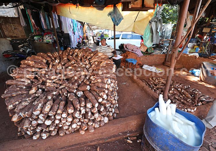 Vente de manioc au Paraguay, marché Abasto, Ciudad del Este