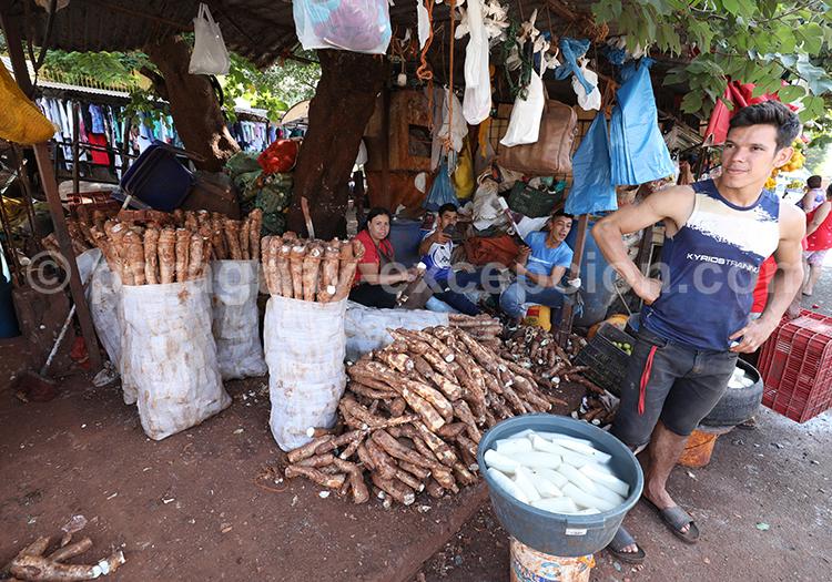 Acheter du manioc au marché Abasto, Paraguay