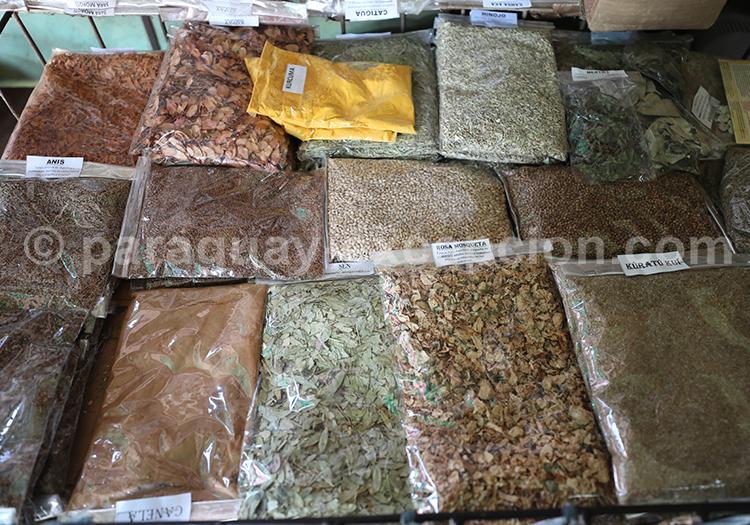 Sachet d'épices au Paraguay, visiter le marché Abasto, Ciudad del Este