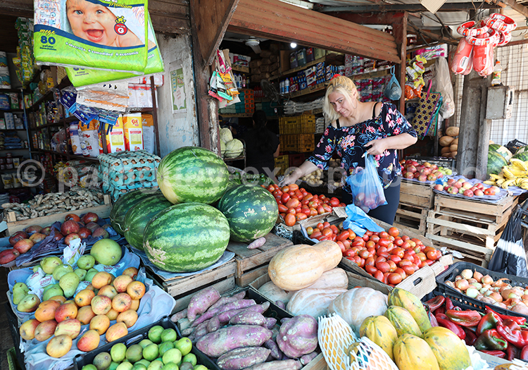 Courges du Paraguay, marché Abasto