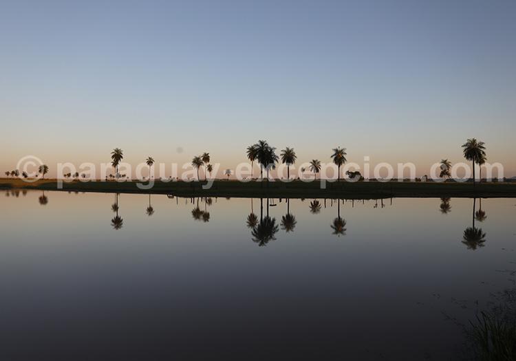 Coucher de soleil à l'Estancia Tacuaty, Yvy, Paraguay