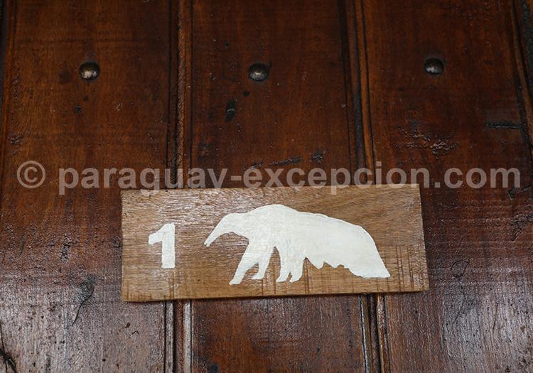Quelles activités faire à Tres Gigantes, Chaco, Paraguay
