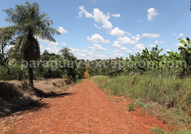 Terre rouge du Paraguay, Yvy, Bella Vista