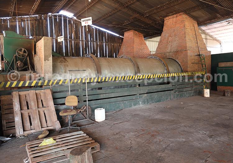 Manufacture et production de maté, Bella Vista, Paraguay