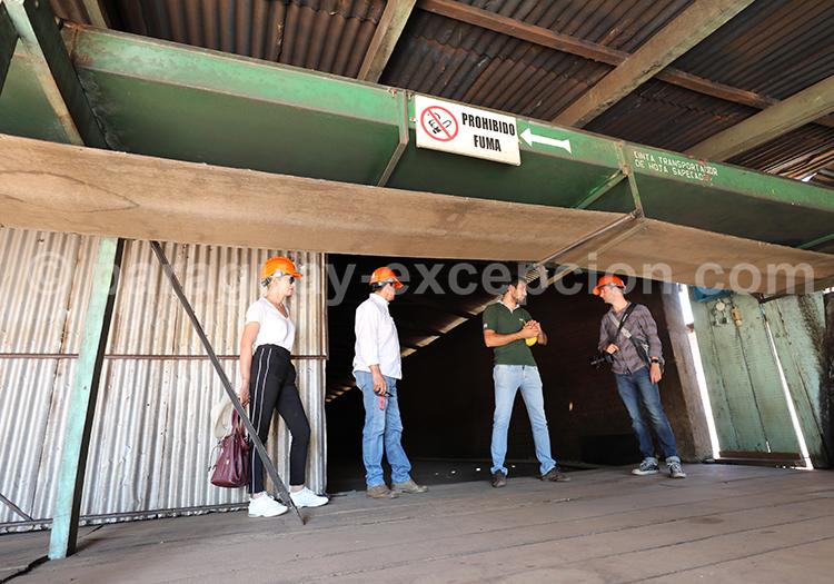 Visite guidée d'une usine de production de mate, Yerba Selecta, Bella Vista