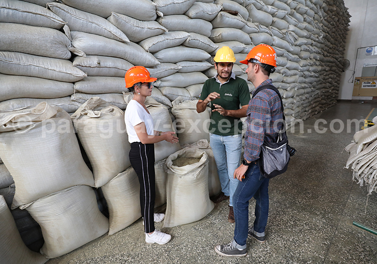 Quelle manufacture de production de yerba a mate visiter, Yerba Selecta