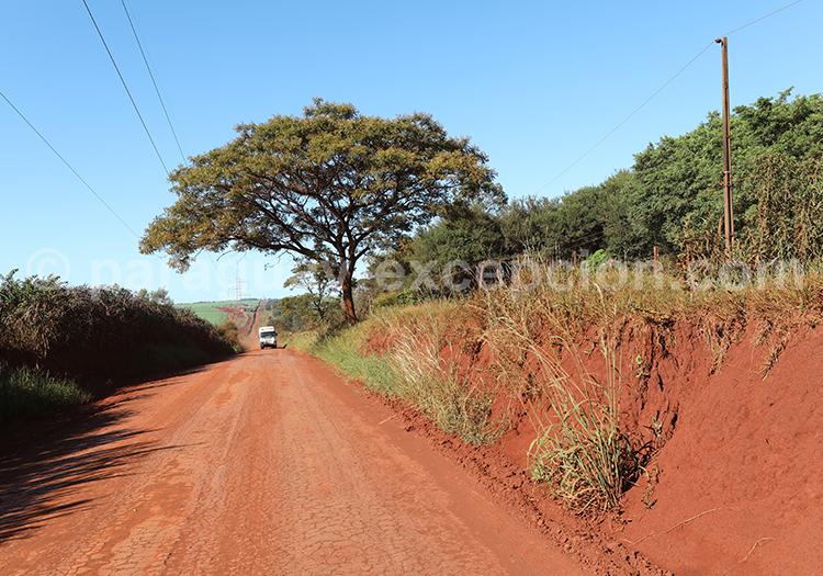 Chemin en terre du Paraguay, Paraná