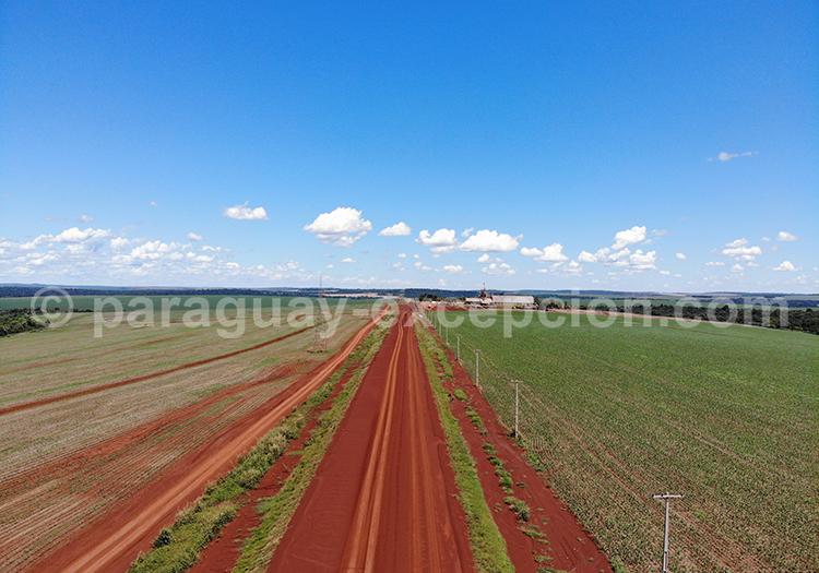 Se promener dans les champs agricoles de la région Paraná