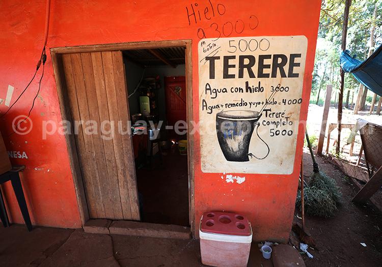 Terere, café du Paraguay dans la région Paraná