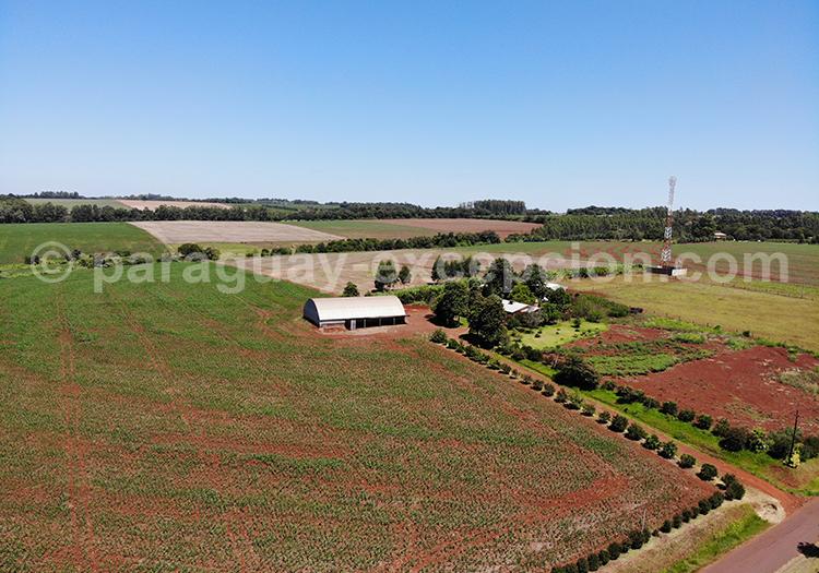 Vue par drone de la région Paraná, Paraguay