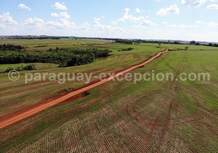 Paraguay vu du ciel, Paraná