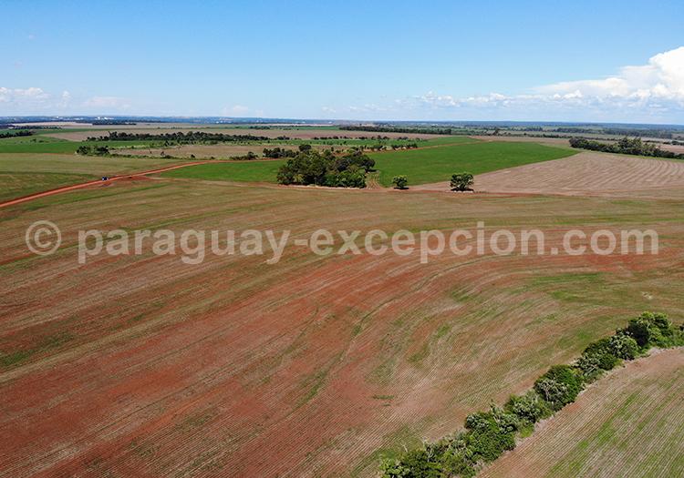 La campagne du Paraguay vue du ciel