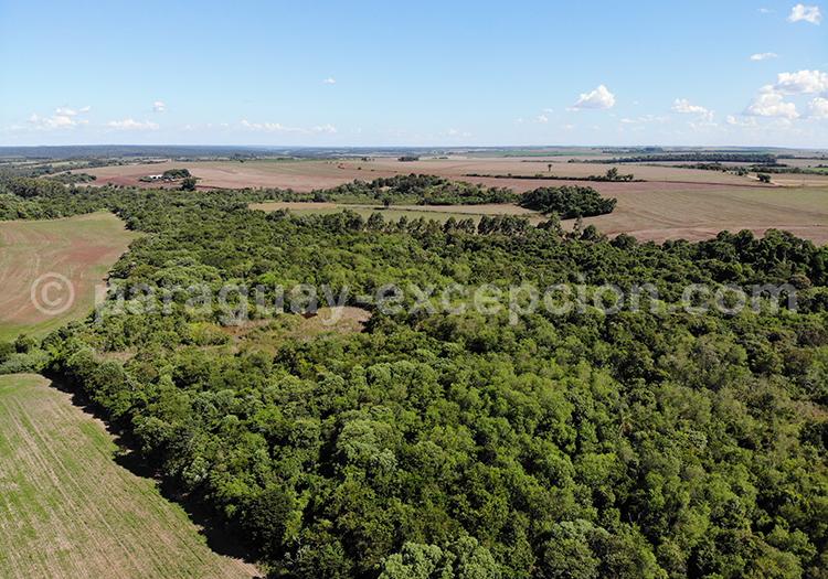 Survol de la région Paraná, Paraguay