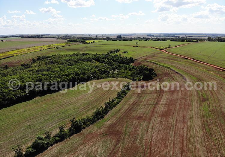 Prise de vue par drone au Paraguay, région Paraná