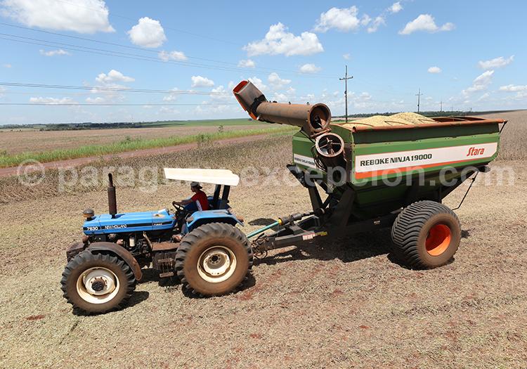 Tracteur et agriculture au Paraguay, Paraná